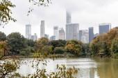 edifici e Parco della città di new york, Stati Uniti dAmerica