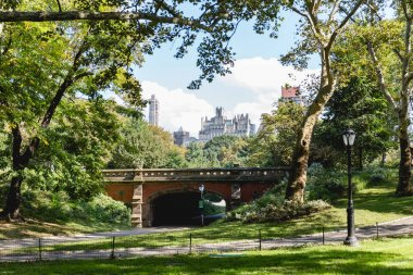 buildings and city park in new york, usa