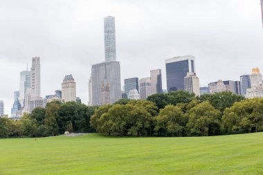 urban scene with trees in city park and skyscrapers in new york, usa