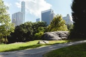 NEW YORK, USA - OCTOBER 8, 2018: scenic view of skyscrapers and park in new york, usa