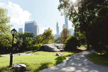 NEW YORK, USA - OCTOBER 8, 2018: scenic view of skyscrapers and city park in new york, usa