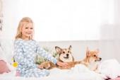 roztomilý kluk v pyžamu mazlit corgi psů v posteli