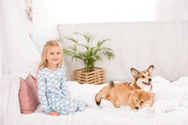 adorable happy child in pajamas sitting with corgi dogs in bed