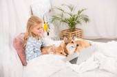 Fotografie roztomilé dítě ležet v posteli s corgi psy a pomocí přenosného počítače doma