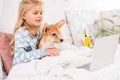 smiling child lying in bed, hugging corgi dog and using laptop at home