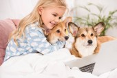 smiling child lying in bed with corgi dogs and looking at laptop