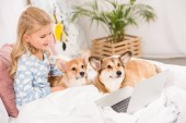 adorable child lying in bed with corgi dogs and using laptop at home