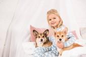 dítě sedí na posteli s pejsky welsh corgi pembroke a při pohledu na fotoaparát doma
