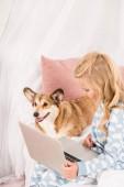 Fotografie dítě sedí v posteli s rozkošný corgi pes a použití přenosného počítače v domácnosti