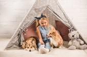 roztomilé dítě sedí s welsh corgi psy ve vigvamu doma