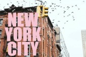 urban scene with birds flying over buildings with pink new york city lettering in new york, usa