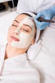 Fotografie Kosmetikerin, die Anwendung von kosmetischen Maske auf halb Frau Gesicht mit Kosmetik Pinsel im Schönheitssalon