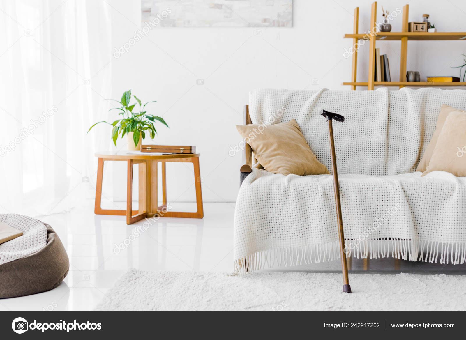 Cool Modern Living Room Sofa Coffee Table Walking Cane Stock Spiritservingveterans Wood Chair Design Ideas Spiritservingveteransorg