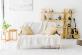 Fotografia moderno salotto con divano, tavolino e bookshelf