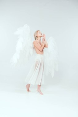 Beautiful tender woman with angel wings gesturing with hands and posing isolated on white stock vector
