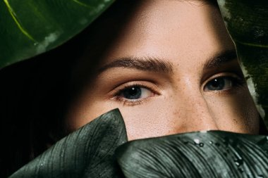 attractive woman with freckles posing with green palm leaves