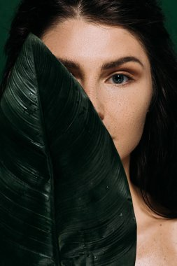 beautiful woman with perfect skin posing with green palm leaf