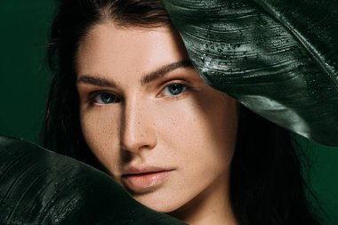 attractive woman with freckles on face posing with palm leaves isolated on green