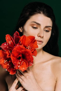 beautiful tender girl with freckles on face posing with red amaryllis flowers, isolated on green