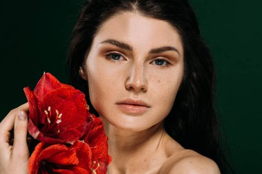 beautiful woman with freckles on face posing with red amaryllis flowers, isolated on green