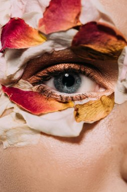 close up of girl with flower petals around eye