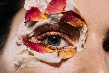 close up of beautiful girl with flower petals around eye