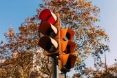 Fotografie Ampel mit roten Signal, grünen Bäumen und klaren blauen Himmel im Hintergrund, Barcelona, Spanien
