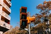 Fotografie Ampel mit grünem Signal, Haus und Bäumen im Hintergrund