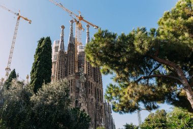 BARCELONA, SPAIN - DECEMBER 28, 2018: selective focus of Temple Expiatori de la Sagrada Familia, one of the most famous buildings of Barcelona, built by Antoni Gaudi stock vector