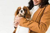 Photo Cropped view of smiling pregnant woman holding dog isolated on white