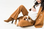Photo Cropped view of laughing pregnant woman with dog touching belly on white background