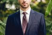 nyírt kilátás üzletember a ruha és a nyakkendő állva az üvegházhatást okozó