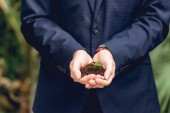 partial view of businessman in suit holding green sprout and ground in hands in orangery