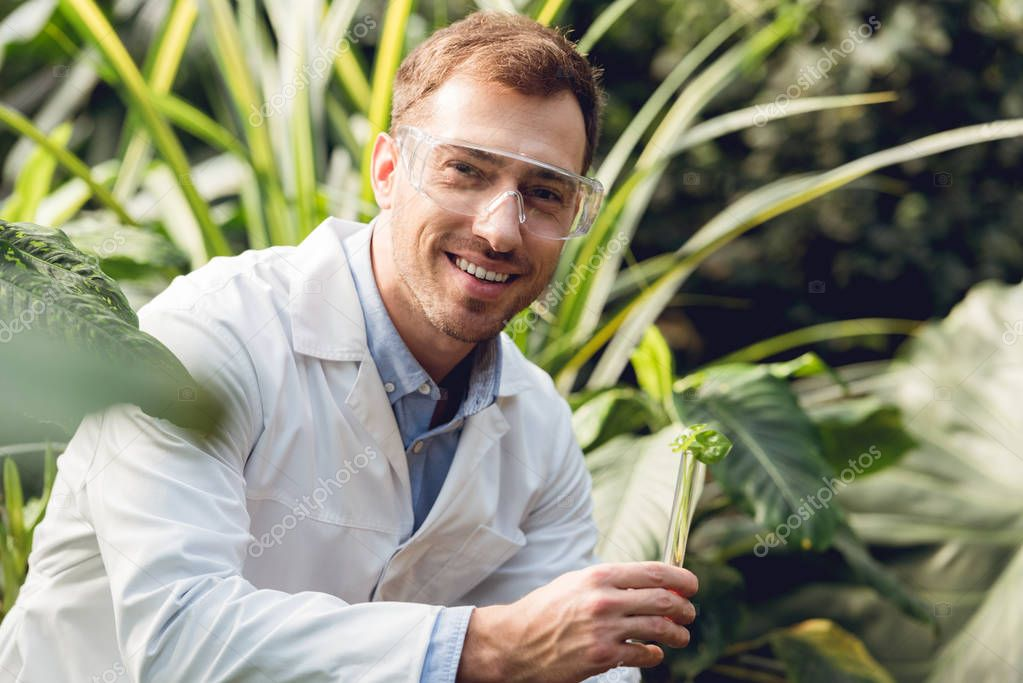 selective focus of smiling handsome scientist in white coat and goggles taking plant sample in flask in orangery