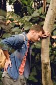 Fényképek fájdalmas utazó hátizsák és hátfájás állandó közelében fa törzse a trópusi erdőben