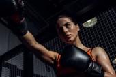 Fotografie Niedrige Winkelansicht des Boxers in Boxhandschuhen trainieren und wegschauen