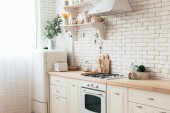 cozy modern kitchen with cooking utensils and plants
