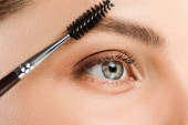 cropped view of woman holding eyebrow brush near eyebrow