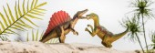 Photo selective focus of toy dinosaurs roaring on sand dune with tropical leaves, panoramic shot