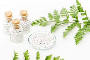selective focus of round pills in glass plate near bottles with wooden corks and green leaves on white