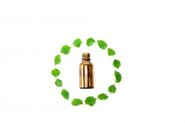 Top view of bottle near frame of green fresh leaves isolated on white stock vector
