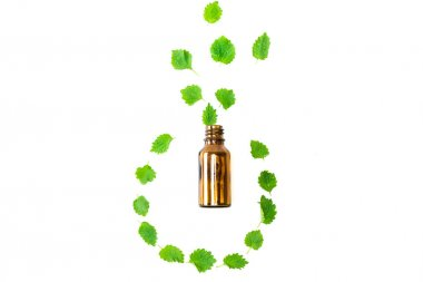 Top view of bottle near green fresh leaves isolated on white stock vector