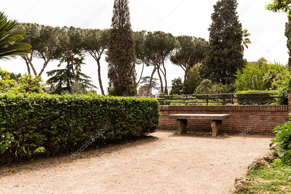 beautiful park with green bushes and trees in sunny day in rome, italy