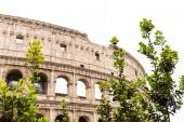 Rom, Italien - 28. Juni 2019: Kolosseumsruinen und grüne Bäume unter grauem Himmel
