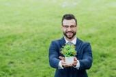 Fényképek fiatal üzletember bemutató fehér virágcserép növényi és mosolygott a kamera