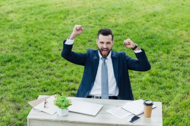 excited young businessman with hands in air sitting behind table in park