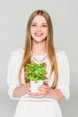 szép lány gazdaság virágcserép a növény izolált szürke