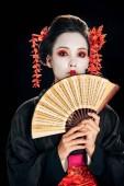 mladá gejša v černém kimonu s červenými květy ve vlasech drží tradiční asijské ruční ventilátor izolované na černé