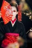 selektivní zaměření krásné gejša v černém kimonu s červenými květy ve vlasech s ručním ventilátorem před obličejem a sakury, izolované na černém
