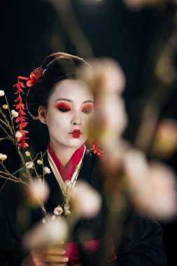 Selective focus of beautiful geisha in black kimono with red flowers in hair and sakura branches isolated on black stock vector